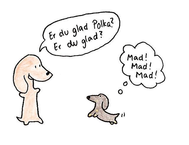 Polka er glad