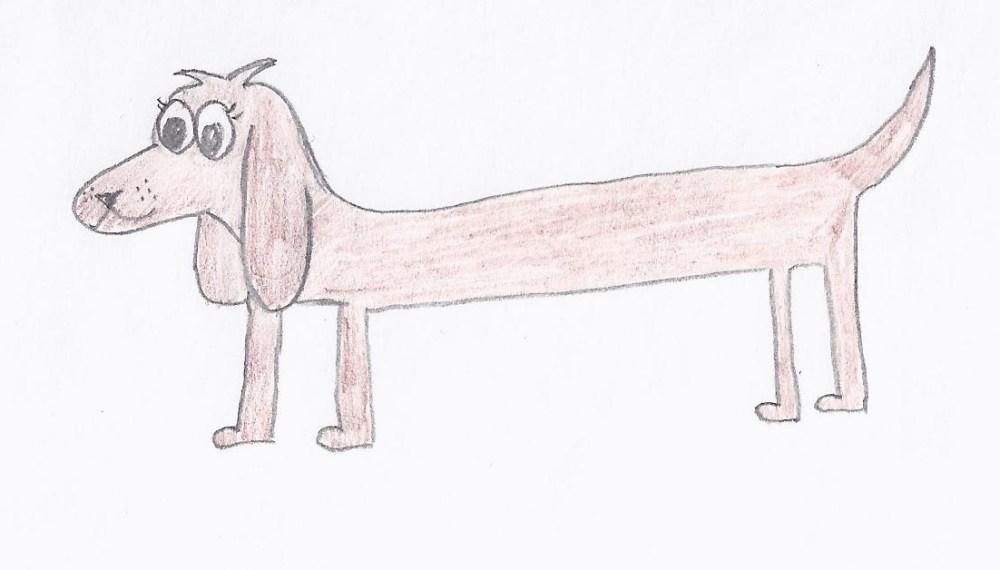 fine hunde tegninger