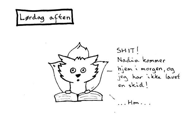 Hannegæsteblog3