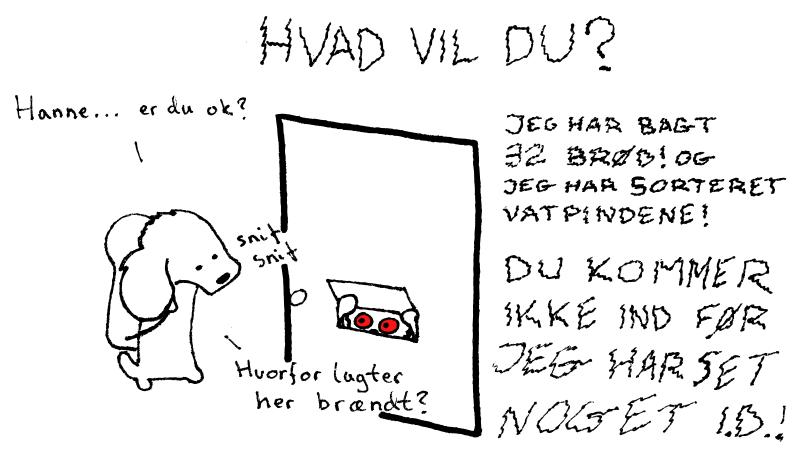 Hannegæsteblog6
